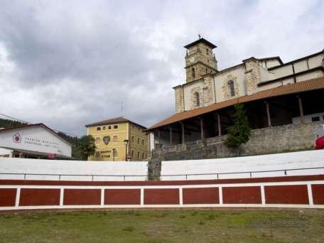 Turtzioz 2012-001