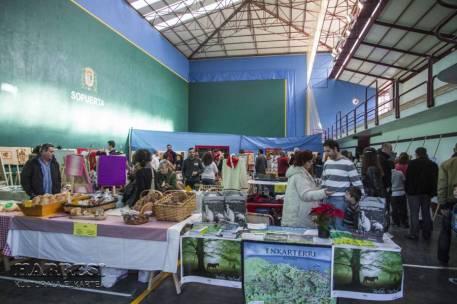 IV Feria Artesanía Sopuerta