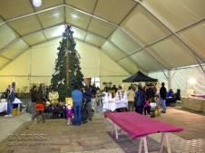 Feria artesania Balmaseda 19