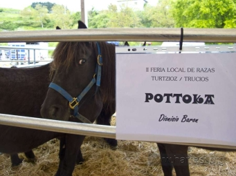 Feria Pottoka. Turtzioz - 016