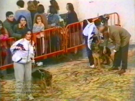 Sopuerta 1998. Canino - 001