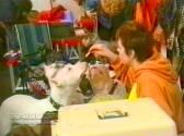 Sopuerta 1998. Canino - 008
